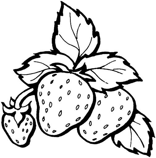 Paint your Fruit
