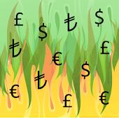 Income Expense (Free)