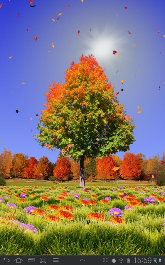 autumn trees live wallpaper android apps auf google play