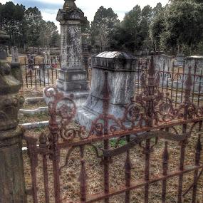 Grave Yard by Trey Martin - Uncategorized All Uncategorized