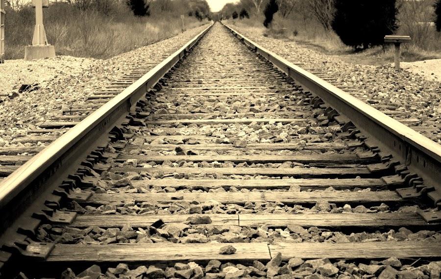 by Brandi Hollywood - Transportation Railway Tracks (  )