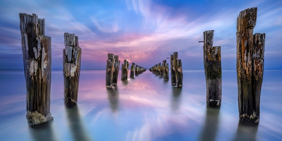 Walk On Water by Shannon Rogers - Landscapes Waterscapes ( canon, shannon rogers photography, shannon rogers, stump, purple, twilight, jetty, poles, sunset, australia, pier, long exposure, clifton springs, pink, victoria, the mood factory, mood, lighting, sassy, colored, colorful, scenic, artificial, lights, scents, senses, hot pink, confident, fun, mood factory ,  )