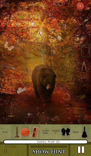 Hidden Object - Animal Seasons