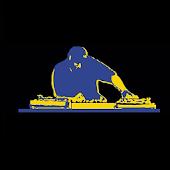 DJ Niterider