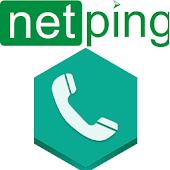 NetPing Controls