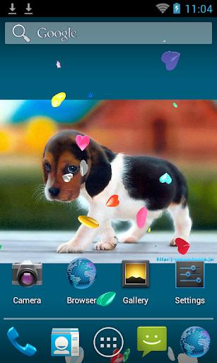Love Hearts 3D Live-Wallpaper