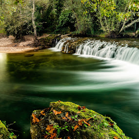 Flow by Ricardo  Guimaraes - Landscapes Waterscapes ( smooth, peaceful, waterscape, traces, forest, flow, landscape, leafs, silence, trees, portugal, reflexions, river, , renewal, green, forests, nature, natural, scenic, relaxing, meditation, the mood factory, mood, emotions, jade, revive, inspirational, earthly )