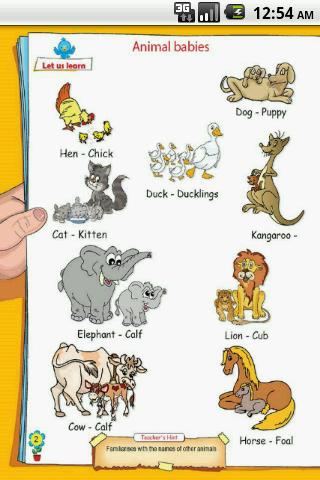 玩書籍App|UKG-Animal免費|APP試玩