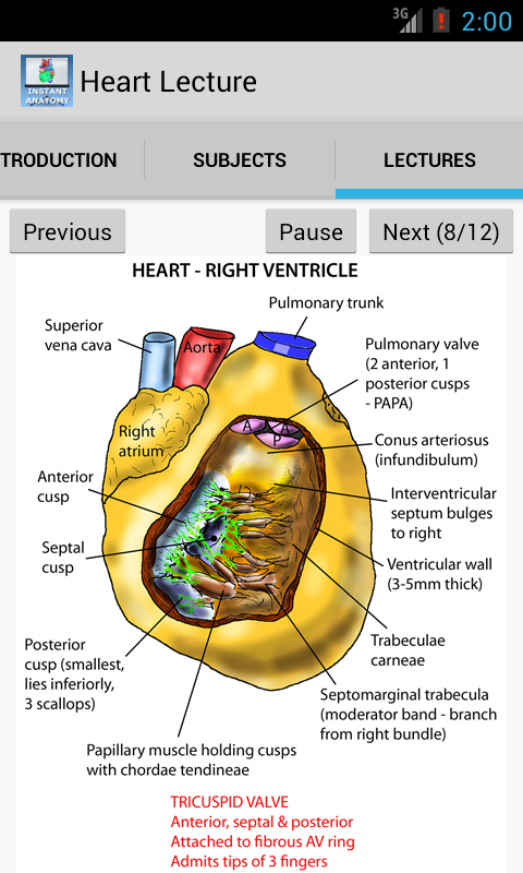 Anatomy Heart Lecture - screenshot