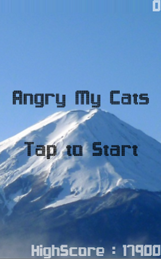 Angry My Cats