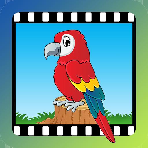 Video Touch - 鸟类 教育 App LOGO-硬是要APP