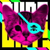DUDE CAT!