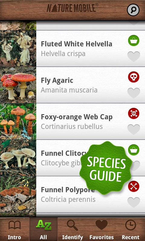 Mushrooms PRO - NATURE MOBILE - screenshot