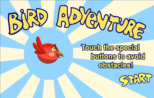 Bird Adventure