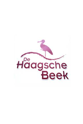 De Haagschebeek - screenshot