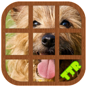 Yorkshire Terrier Slide Puzzle