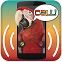 Parrot Announcer - Call Talker icon