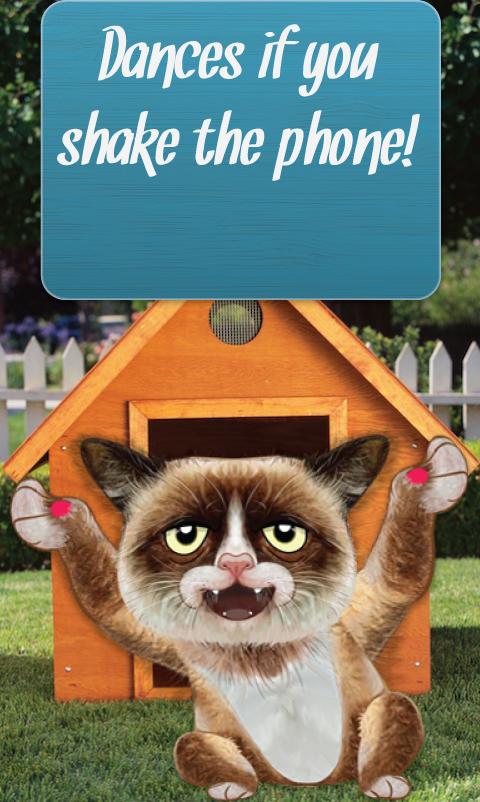 Talking Grumpy Cat - screenshot