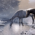 Horses and snow Live Wallpaper logo