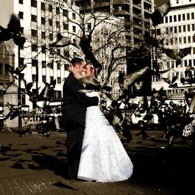 Doves by Louise Lacante - Wedding Bride & Groom