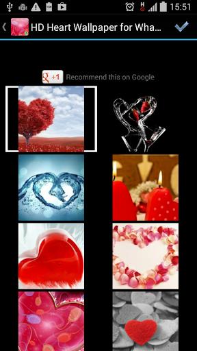 Heart HD Whatsapp Wallpaper