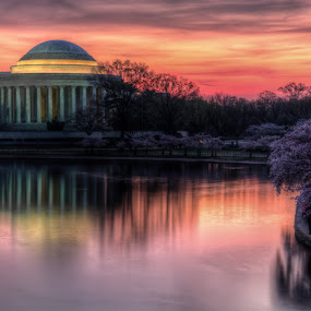 Simple Beautiful by Dan Girard - City,  Street & Park  City Parks ( water, reflection, dan_girard_photography, 2014, dan girard photography, cherry bloosoms, washington dc, long exposure, sunrise, architecture, landscape, tidal basin )