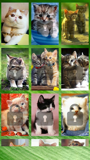Cute Cat Swap Puzzle for Kids