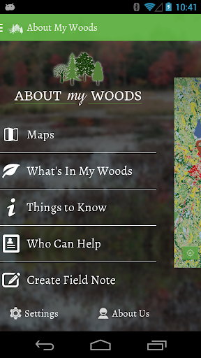 About My Woods