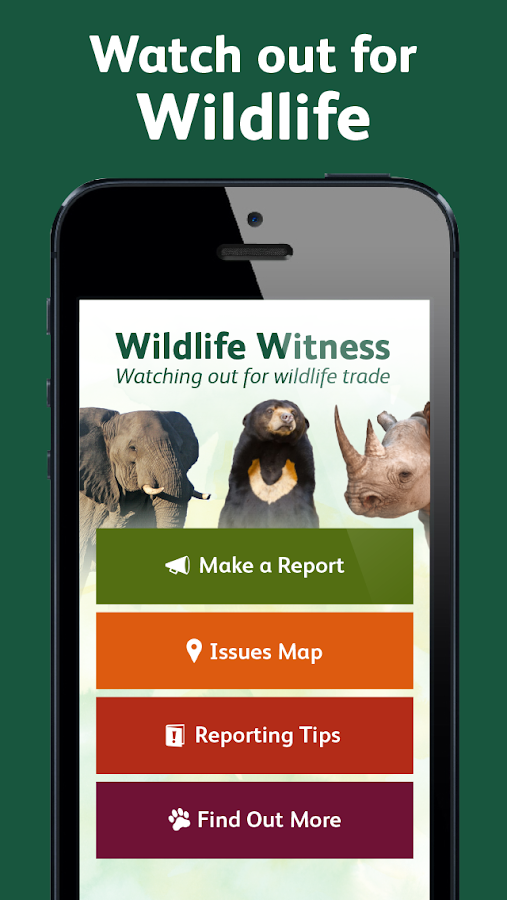 Wildlife Witness- screenshot