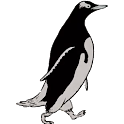 Penguin Run: Adventure
