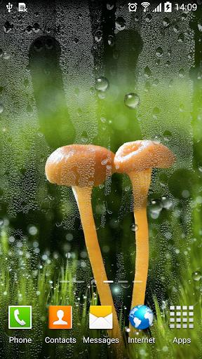 Rain Live Wallpaper 1.0.9 screenshots 3
