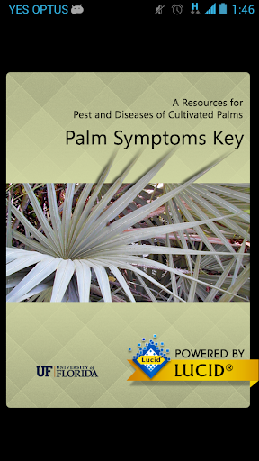 Palm Symptoms Key