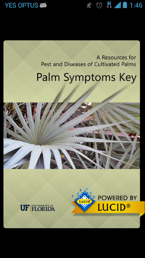 Palm Symptoms Key - screenshot