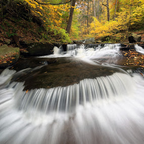 Triangle Falls by Tim Devine - Landscapes Waterscapes ( falls trail, stream, autumn, foliage, kitchen creek, creek, fall, waterfall, triangle falls, glen leigh, ricketts glen state park,  )