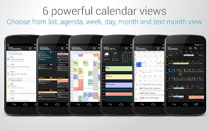 DigiCal+ Calendar Screenshot 29