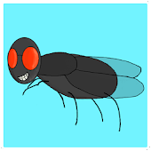 Eduardo The Fly