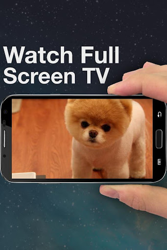 Endless Pets: Watch TV