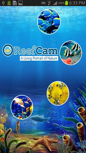 ReefCam