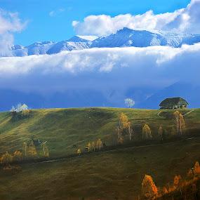 by Nedelcu Valeriu - Landscapes Mountains & Hills