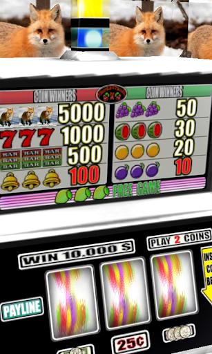 【免費博奕App】Red Fox Slots - Free-APP點子