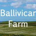 Ballivicar Farm icon