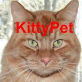 Kitty Pet