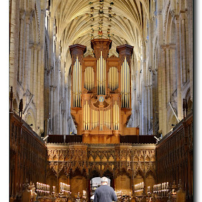 Norwich Cathedral by Dalibor Bakac - Buildings & Architecture Places of Worship ( building, interior, worship )