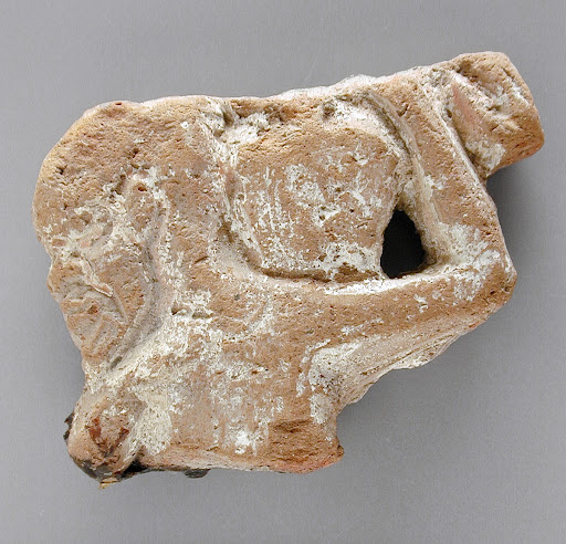 Upper Body Fragment