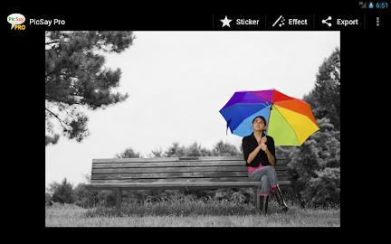 PicSay Pro - Photo Editor Screenshot 8