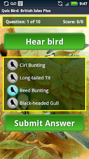 Quiz Bird: British Isles - screenshot thumbnail