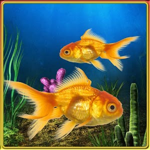 fish tank app
