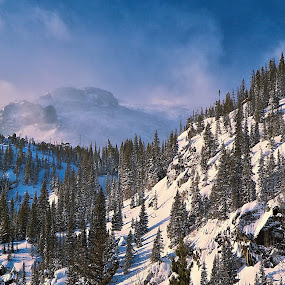 Overlook on Dream Lake Trail RMNP by Johnny Gomez - Landscapes Mountains & Hills