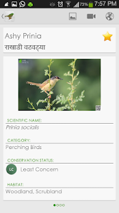 免費下載書籍APP|Indian Birds - Pro app開箱文|APP開箱王