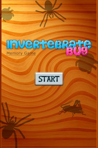 Invertebrate Bug Memory Game